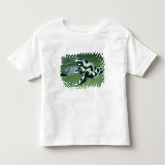 Poison Dart Frog, (Dendrobates auratus) Cahuita Shirts