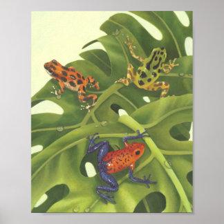 Poison Dart Frogs Print