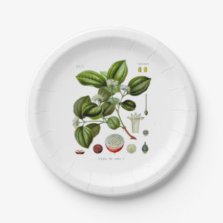 Poison nut tree vintage illustration paper plate 7 inch paper plate