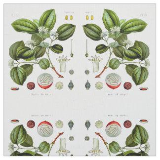 Poison nut tree vintage illustration textile fabric