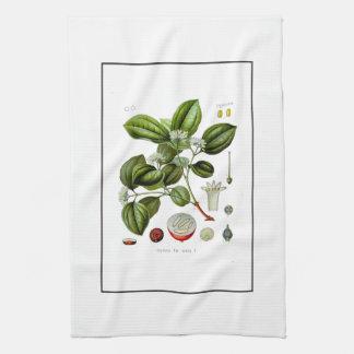Poison nut tree vintage illustration towel