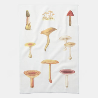 Poisonous or Unwholesome American Fungi Hand Towels