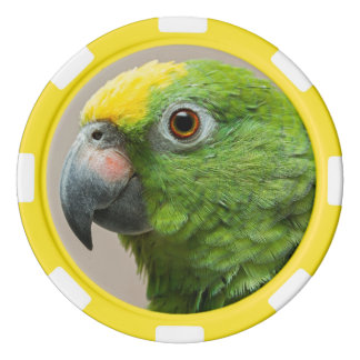 Poker chip Yellow headed Amazon green parrot