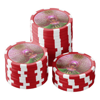 Poker Chips - Earth Star