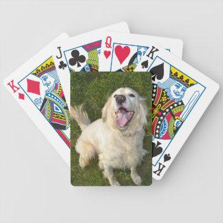 Poker Dog Bicycle Card Decks