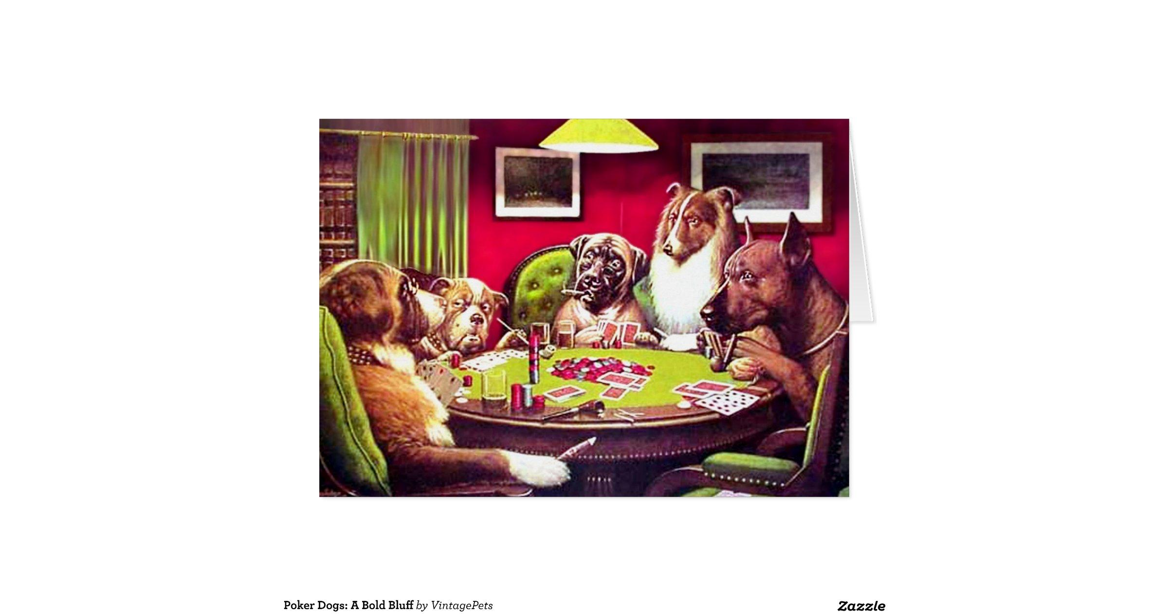 Bold poker announcement