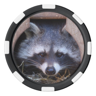 Poker RACOON RACCOON ~ photo Jean Louis Glineur Poker Chips