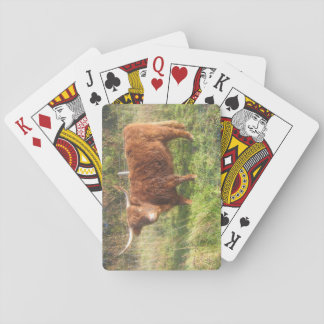 Poker Size Playing Cards With Highland Cow