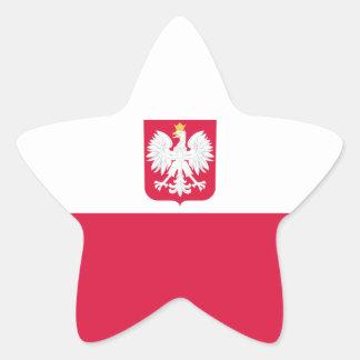 Poland/Pole/Polish Flag Star Sticker