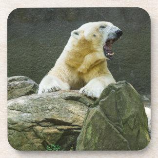 Polar Bear - Angry Beverage Coasters