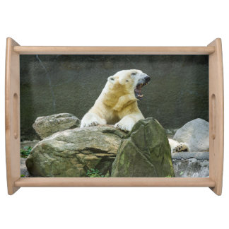 Polar Bear - Angry Serving Tray