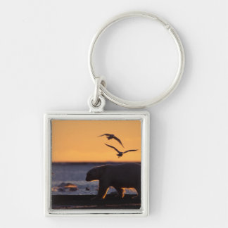 Polar bear at sunrise with glaucous-winged Silver-Colored square key ring
