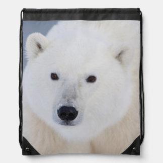 Polar Bear Backpacks