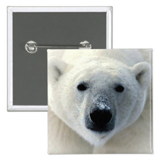 Polar Bear Pins