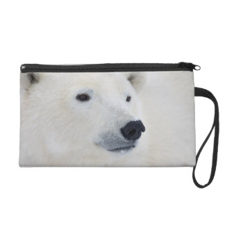 Polar Bear Churchill Wristlet
