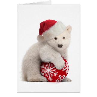 Polar Bear Cub Christmas Card