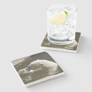 Polar Bear Eating Fruit In Water Stone Coaster