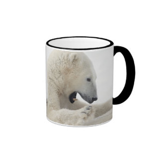 Polar bear engaging in a fight with another bear ringer mug