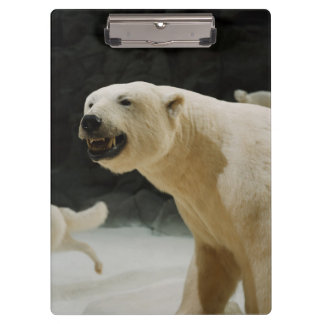 Polar Bear Grin Clipboards