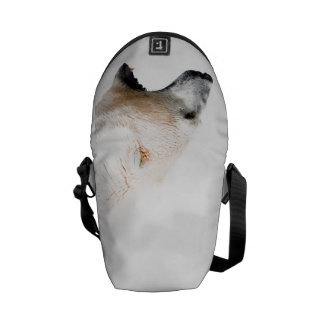 Polar bear growl messenger bag