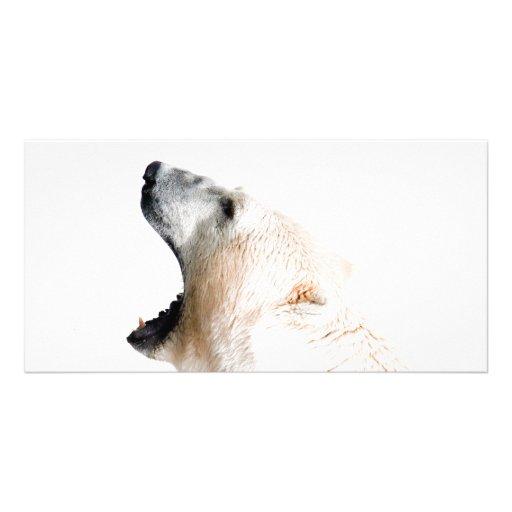 Polar bear growl custom photo card