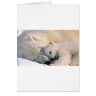 Polar Bear Hugs Card