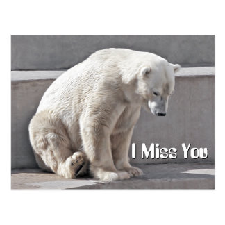 Polar Bear I Miss You Postcard
