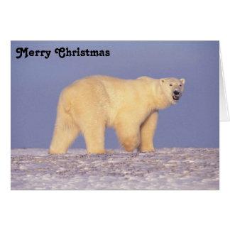 Polar Bear in Arctic Alaska Greeting Card