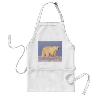 Polar Bear in Arctic Alaska Standard Apron