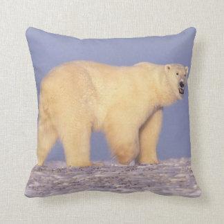 Polar Bear in Arctic Alaska Throw Pillow