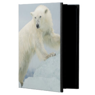Polar bear in summer case for iPad air
