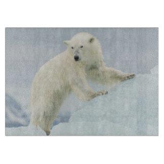 Polar bear in summer cutting board