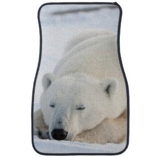 Polar Bear in winter Car Mat