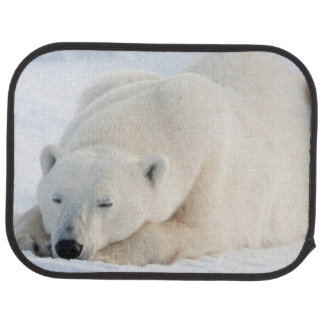 Polar Bear in winter Car Mat