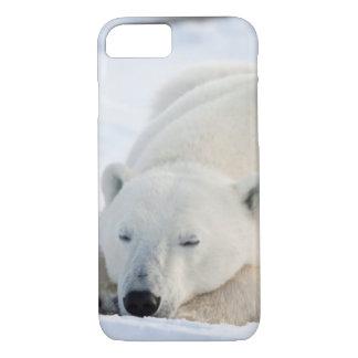 Polar Bear in winter iPhone 8/7 Case