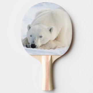 Polar Bear in winter Ping Pong Paddle