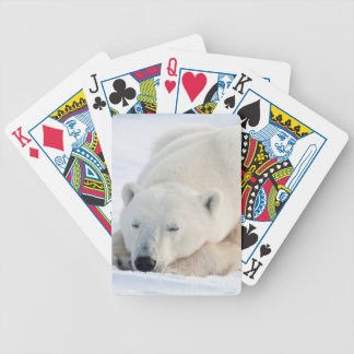 Polar Bear in winter Poker Deck