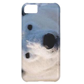 Polar Bear iPhone 5C Case