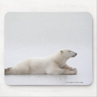 Polar Bear Laying On A Lake Of Ice Mouse Mat