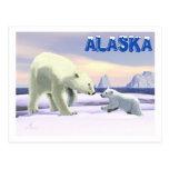 Polar Bear - Mama Nose Best Postcard