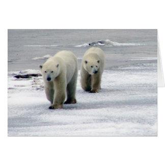 Polar Bear Mom & Cub Card