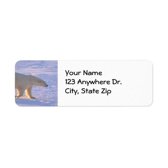 Polar Bear Morn Return Address Label