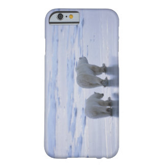 Polar Bear Mother and Cub Barely There iPhone 6 Case