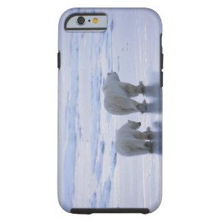 Polar Bear Mother and Cub Tough iPhone 6 Case