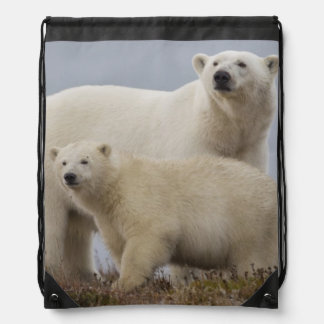 Polar bear mother and her cub rest in the tundra drawstring bag