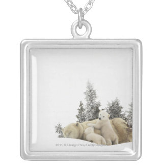 Polar Bear Mother And Her Cubs in Wapusk Park Silver Plated Necklace