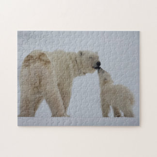 Polar Bear mother with cub Puzzle