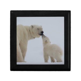 Polar Bear mother with cub Small Square Gift Box