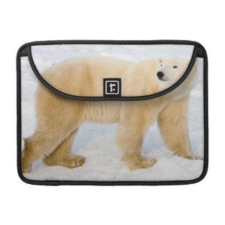 Polar Bear near Hudson Bay 2 Sleeve For MacBooks