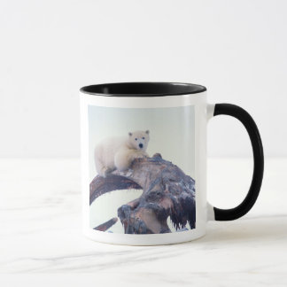 Polar bear on top of a bowhead whale jaw bone, mug